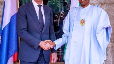 Photo of Nigeria, Netherlands partners to improve trade, investment
