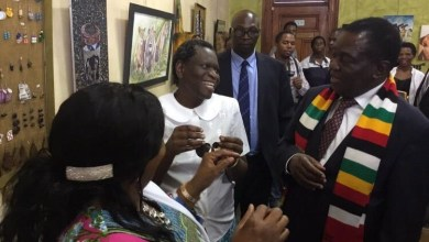 Photo of Mnangagwa's art gallery visit