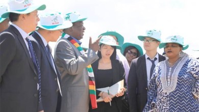 Photo of China interested in Zimbabwe's Agricultural sector