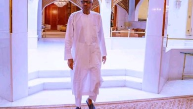 Photo of We can't go to sleep over Chibok girls issue – Buhari