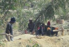 Photo of Zim's small scale miners bemoans fixed gold price, pushes for a review