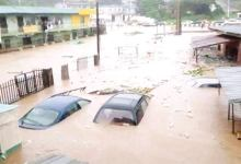 Photo of Flood kills 25, washes 3,500 houses, 2,000 farmlands in Bauchi