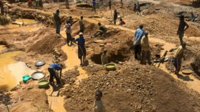 Photo of Zimbabwe's gold output drops 53% in August on Covid-19 impact