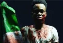 Photo of #LekkiMassacre: Responsible for killings, PDP charges Buhari