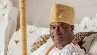 Photo of Nigeria: Herders: I apologise for my utterances to Ooni, says Ighoho