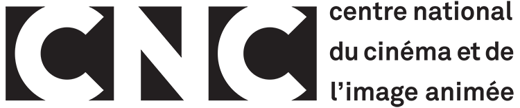 """Comment le CNC finance les webdocs ? Les réponses de la présidente de la commission """"nouveaux médias""""."""