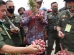 Food Estate Humbahas Manfaatkan Lahan 30.000 Hektar