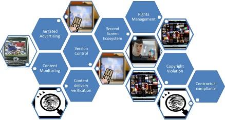 Digital Fingerprinting Applications