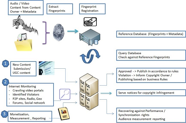 Digital-Fingerprinting-Workflow