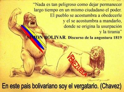 hugo chavez, dictadura, venezuela, dictador, bosal, mordaza, agua contaminada, fecal, heces, caca, aguas negras, agua potable, cancer, tumores, hidrocentro, hospitales, metales, ley, leyes