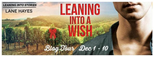 Lane Hayes - Leaning Into a Wish Tour Banner