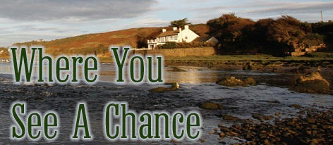 Alexa Milne - Where You See A Chance Banner