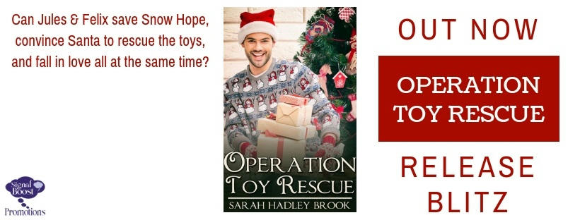 Sarah Hadley Brook - Operation Toy Rescue RBBanner-24