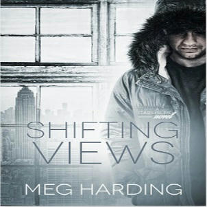 Meg Harding - Shifting Views Square