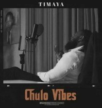 "Lyrics: Timaya – ""Pull Up"" ft. Burna Boy"