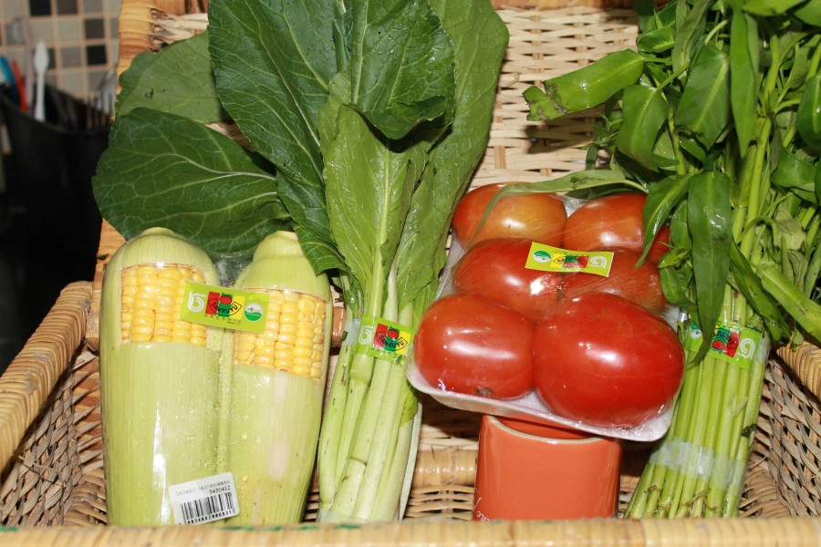 penyimpanan tanaman organik
