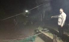 Permalink ke Polsek Pugung Cek TKP Jebolnya Tanggul Irigasi Sebabkan Satu Hektar Sawah Siap Panen Terendam