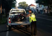 Petugas evakuasi Sepeda motor yang mengalami kecelakaan