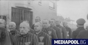 100-годишният бивш пазач на нацистки лагер е подсъдим в Германия