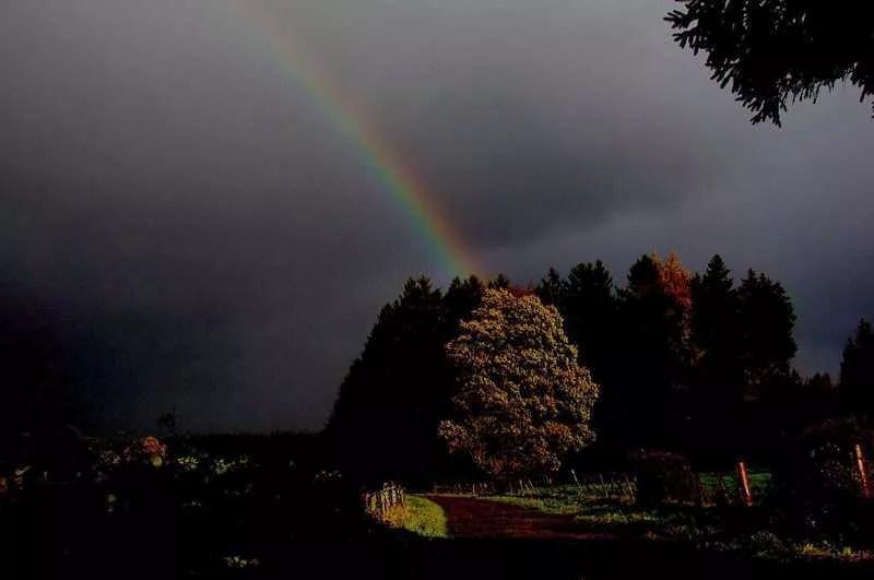 Météo populaire : les signes prédictifs, et la légende du Rayon de la Vierge