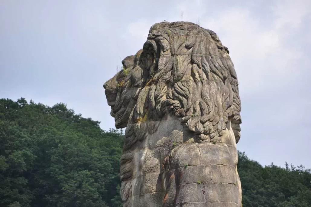 barrage_gileppe_lion_5