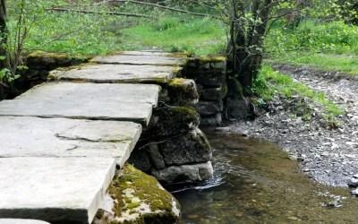 Les ponts de chayes, témoins discrets de la vie rurale