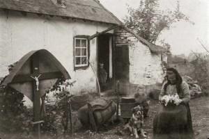 Vieille chaumière en Ardenne du côté de Stavelot