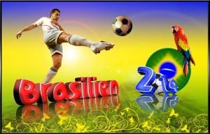 Brésil-2014
