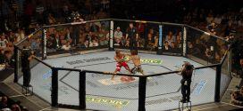 Numericable lance une chaîne dédiée à l'UFC
