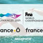 natation_france_o_3_fina_2019_gwangju