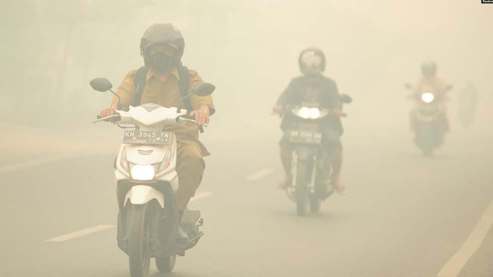 MA Tolak Kasasi Presiden Jokowi, Terkait Kasus Kebakaran Hutan