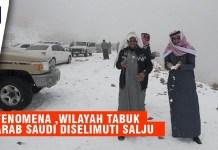 Fenomena Aneh, Wilayah Tabuk Arab Saudi Diselimuti Salju