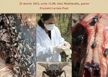 In spatele usilor inchise - rolul insectelor in investigatia criminalistica - Antipa