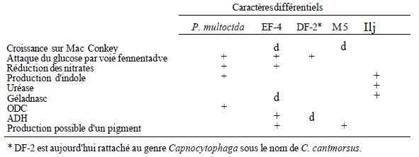 Autres bacilles à gram négatif aéro-anaérobies