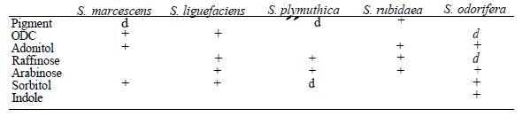 TABLEAU V : caractères distinctifs des différentes espèces de Serratia