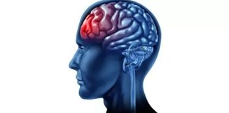 treatment-option-after-traumatic-brain-injury