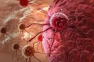 immunotherapyopt-696x461