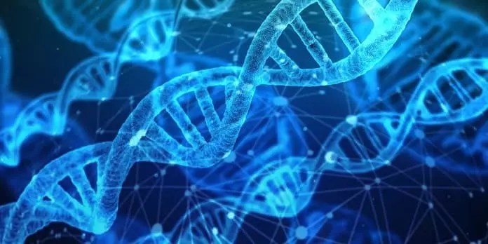Schizophrenia May Start In Womb >> How Do Genes And Birth Complications Affect Schizophrenia Risk