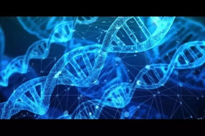 CRISPR gene editing