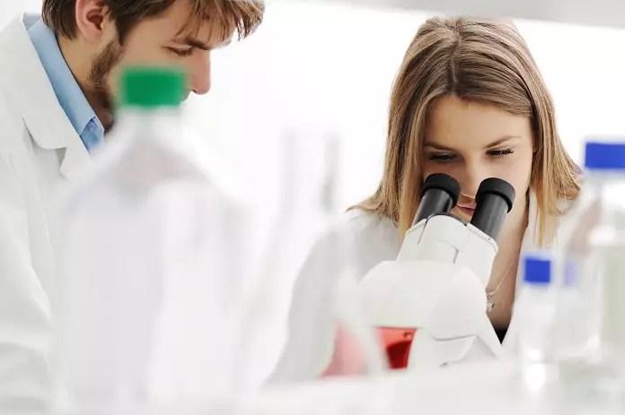 bone tissue engineering