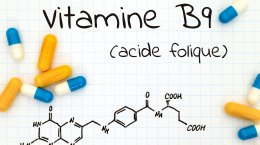 Vitamine B9 (acide folique)