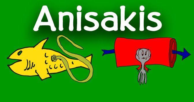 Anisakis - Toda la información en la Medicinapedia