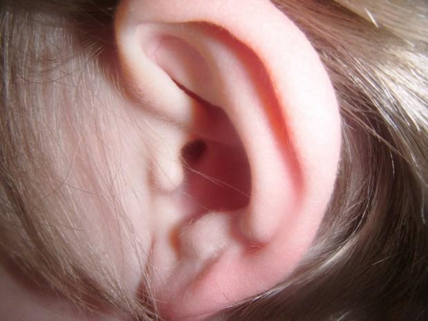 human-ear-1462020301zmM