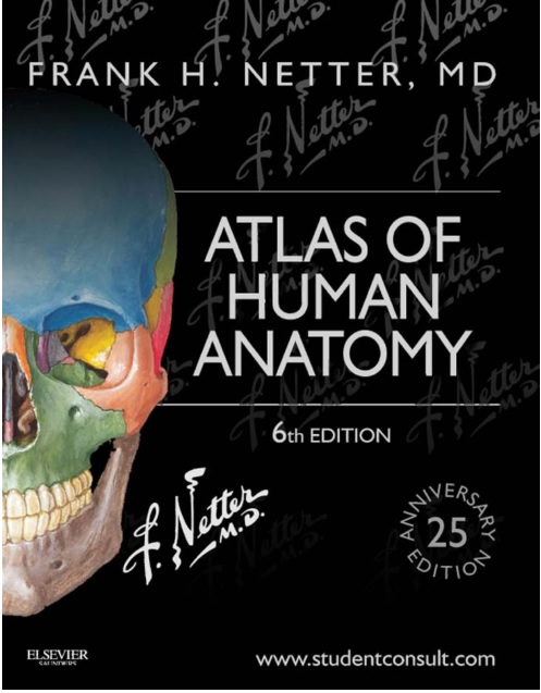 Atlas Of Human Anatomy Sixth Edition Pdf Periodic Diagrams Science
