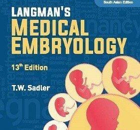langman embryology pdf