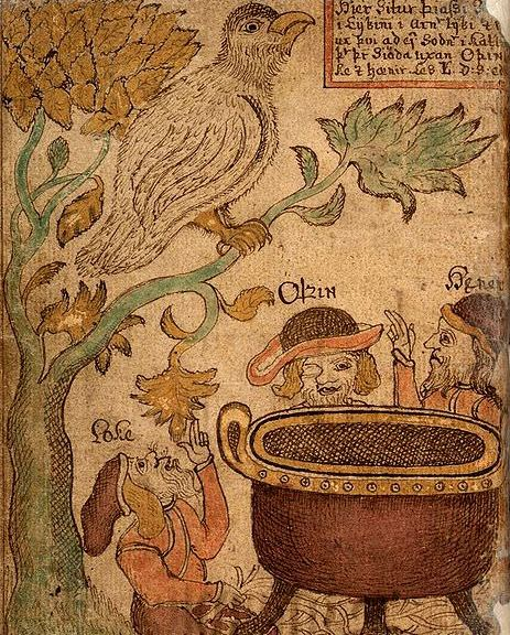 Tree depicted in an Icelandic manuscript from the 18th century
