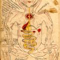 Avicenna's Concept of Cardiovascular Drug Targeting in Medicamenta Cordialia