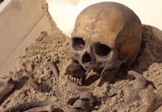 Vampire Skeleton from Poland