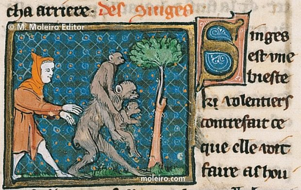 monkeys in the middle ages - from BOOK OF TREASURES by Brunetto Lattini