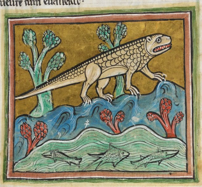 which medieval animal is this